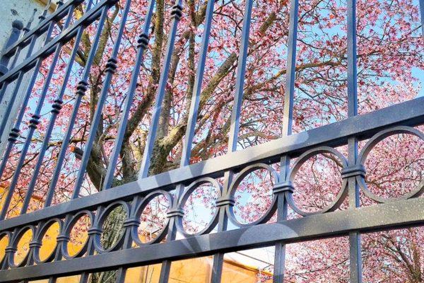 cancello-in-ferro-2